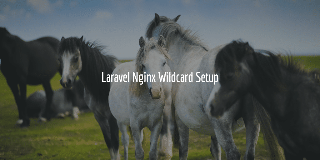 Laravel Nginx Wildcard Setup